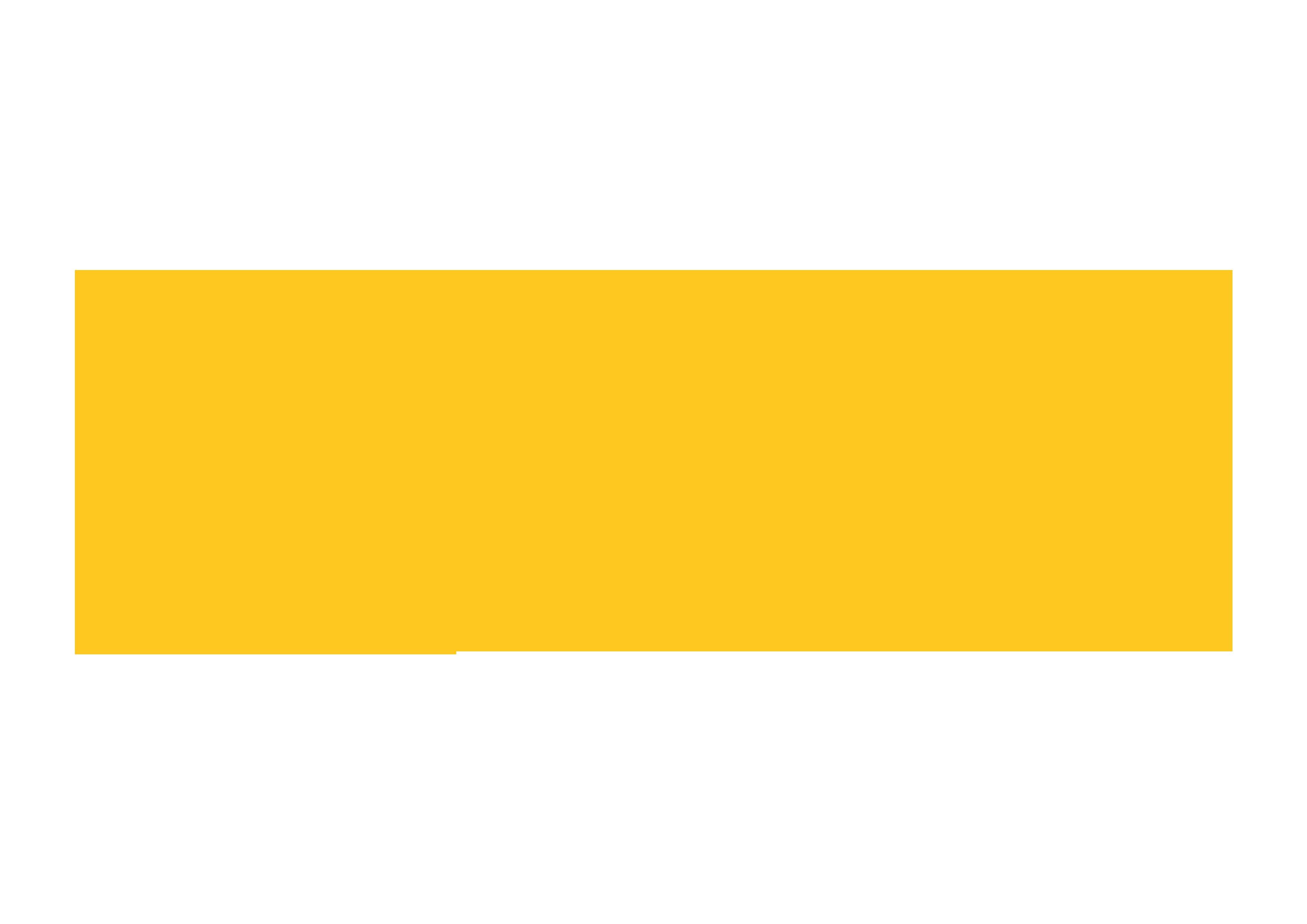 Fireflies Renders